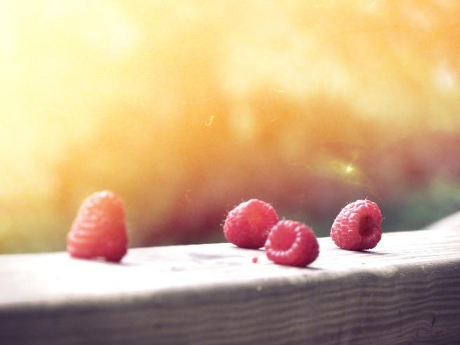 berries - by Ben Moore